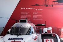 24h du Mans 2014 - Audi au village - 12 victoires vont passer à 13