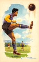 série sport - Illustration par Jean Massé